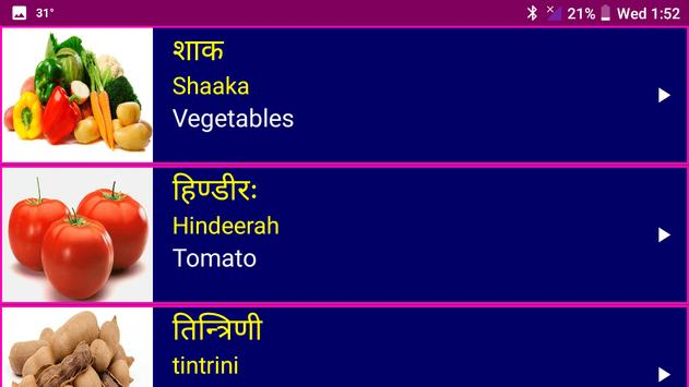 Learn Sanskrit From English screenshot 19