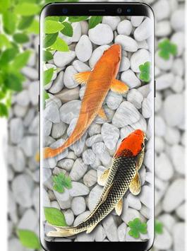 koi fish live wallpaper free download for mobile 3388aa