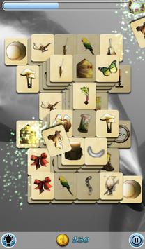 Hidden Mahjong: Dolphin Dreamz poster