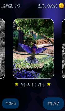 Hidden Pieces: Aviary poster