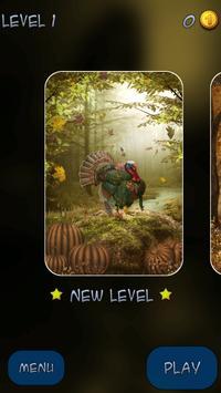 Hidden Pieces: Turkey Trot apk screenshot