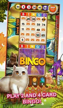 Bingo Pets Mania: Cat Craze screenshot 1