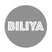 Biliya icon