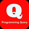 Programming Query icon