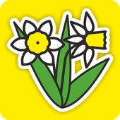 MÓWikMemory Wiosna icon
