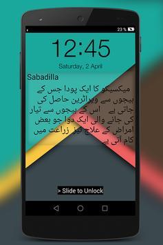 Dictionary Lock Screen screenshot 1