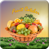 Fruit Catcher Game icon