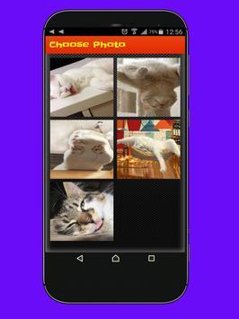Jigsaw Cat poster