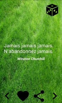 Citations motivation poster