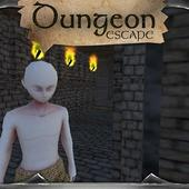 Dungeon Escape 3D Labyrinth icon