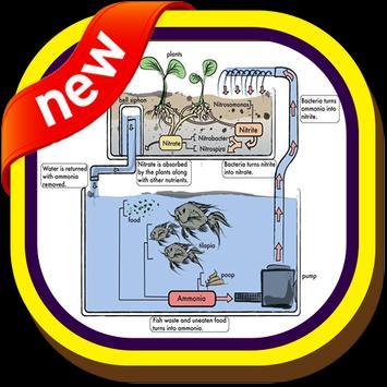 Aquaponics Gardening System screenshot 7
