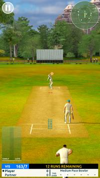 Cricket Megastar تصوير الشاشة 6