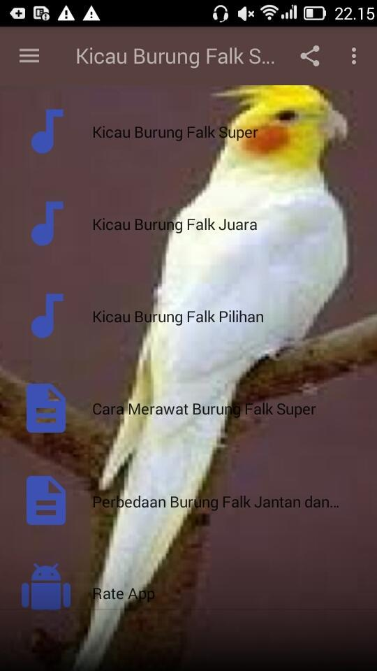 Kicau Burung Falk Super For Android Apk Download