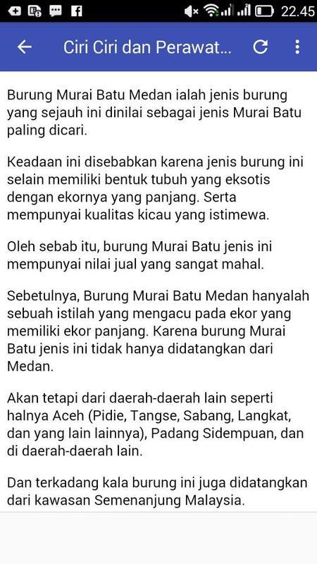 Kicau Murai Batu Medan Super Fur Android Apk Herunterladen