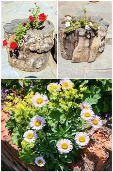 DIY Garden Ideas 2017 poster