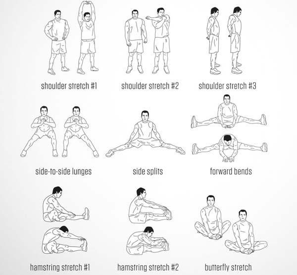Daily Stretches for Android - APK Download