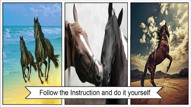 Horse Wallpapers screenshot 2