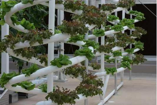 diy hydroponics system poster