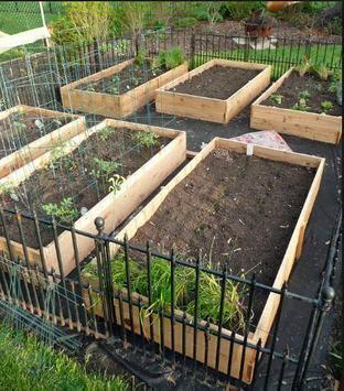 DIY vegetable garden screenshot 4
