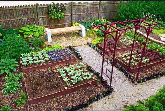 DIY vegetable garden screenshot 1