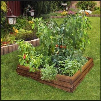 DIY vegetable garden screenshot 3
