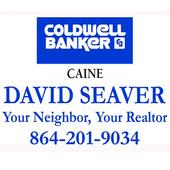 David Seaver icon