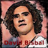 David Bisbal Me Enamoré De Ti Musica icon