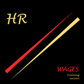 Wages icon