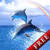 Rainbow Ocean Trial icon