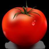 MsfSoft Künye Takip icon