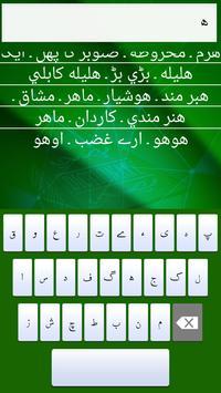 The Urdu To English Dictionary apk screenshot