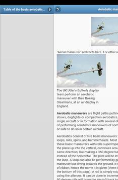 Aerobatics screenshot 10