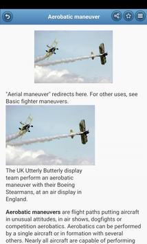 Aerobatics screenshot 1