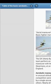 Aerobatics screenshot 2