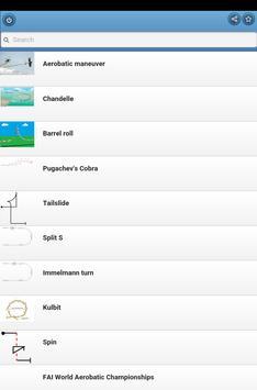 Aerobatics screenshot 8