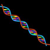 Human Genes icon