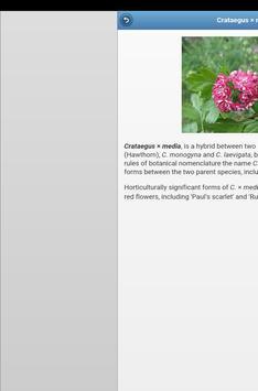 Ornamental trees screenshot 10