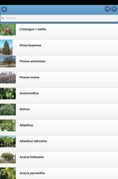 Ornamental trees apk screenshot