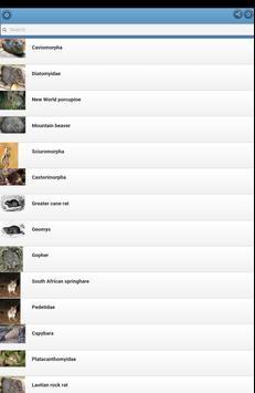 Rodents apk screenshot