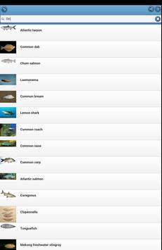 Game-fish apk screenshot