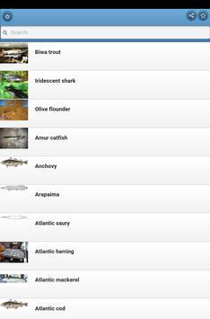Game-fish screenshot 8