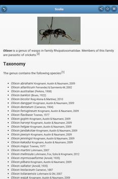 Wasps screenshot 12