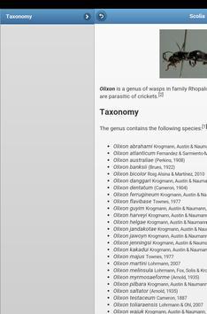 Wasps screenshot 13