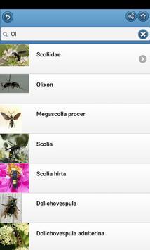 Wasps screenshot 4
