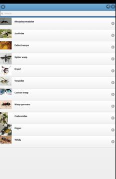 Wasps apk screenshot
