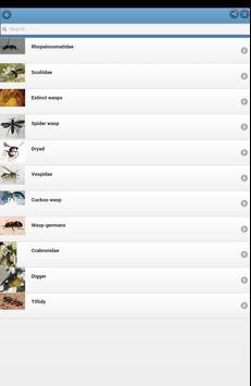 Wasps screenshot 5