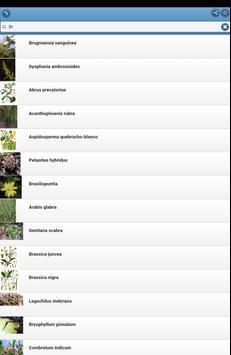 Medicinal herbs apk screenshot