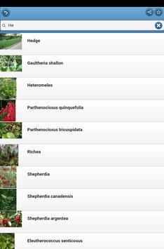 Ornamental shrubs screenshot 11