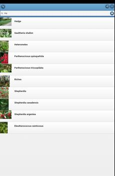 Ornamental shrubs screenshot 7