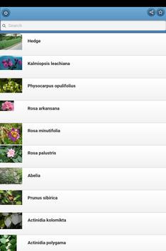 Ornamental shrubs apk screenshot